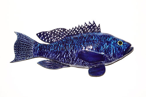 Black Sea Bass 17""