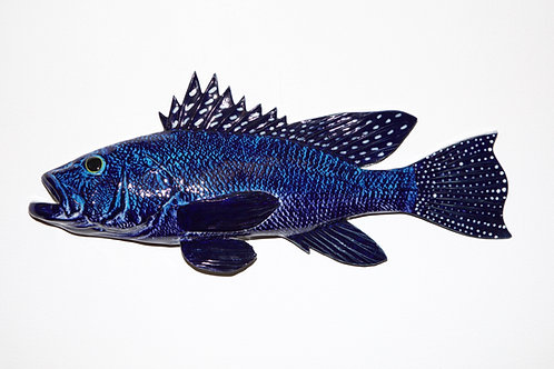 "Black Sea Bass 13.5"""