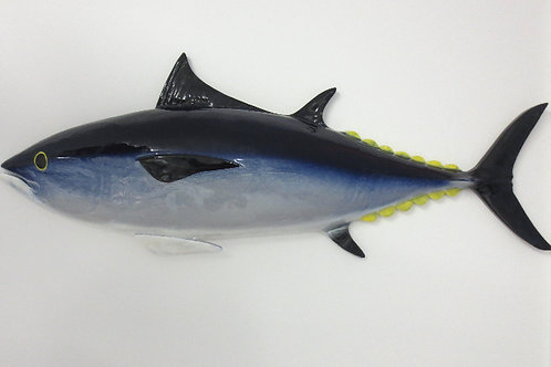 Bluefin Tuna 33""