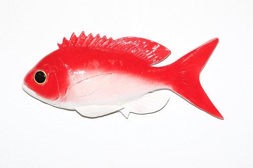 "Deep Sea Red Fish 7.5"""