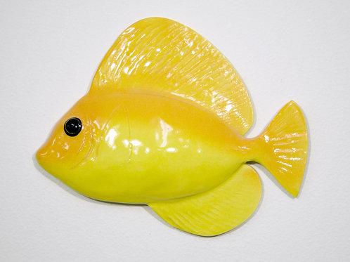 """Yellow Tang 6.5"""" (Left)"""