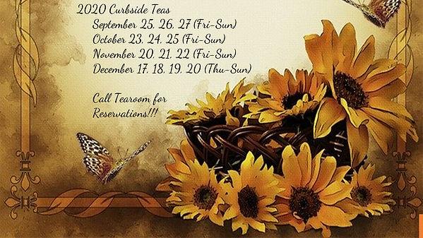 Curbside Sunflower.jpg