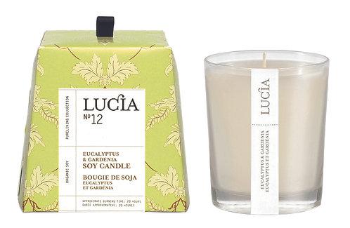N°12 Chandelle Lucia (20h & 50h) - Eucalyptus & Gardénia