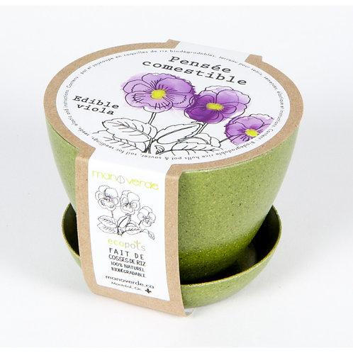 Minipot Pensée comestible - Mano Verde