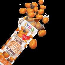 Abricots en chocolat / LYNQ