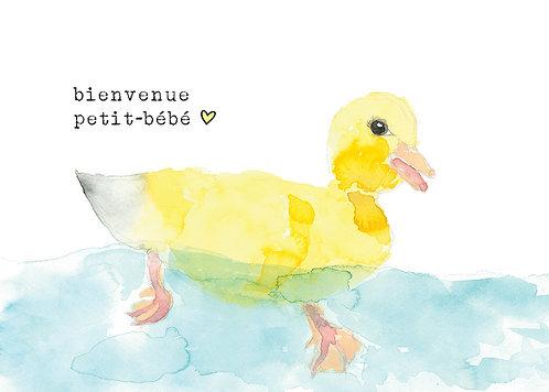 Charlie / 1 - Stéphanie Renière