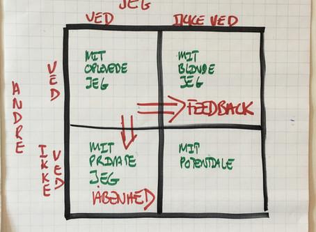 Feedback - en vigtigt virkemiddel til udvikling!