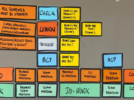 How do you choose to manage and lead your project?