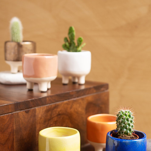 Small earthenware planteravailable in blue or gold colour