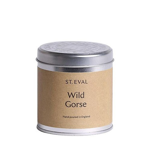 Wild Gorse scented candle (in Tin)