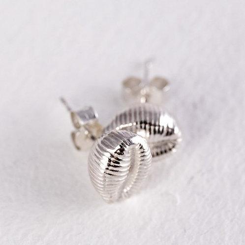 Cowrie Stud Earrings