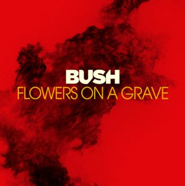 """Bush          """"Flowers On A Grave"""""""