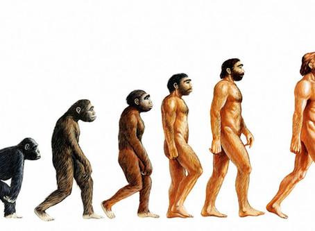 Short manuscript on the evolution of the intelligent principle