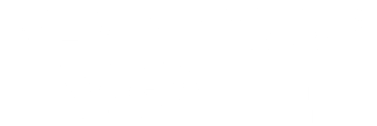 Plan Your Vote WHite.png