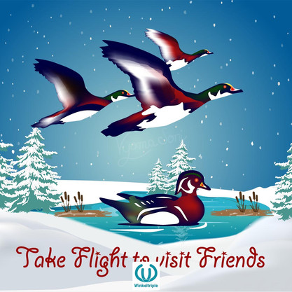 Take Flight to visit Friends