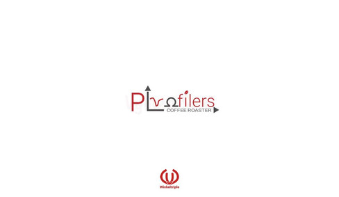Profilers Logo web.jpg