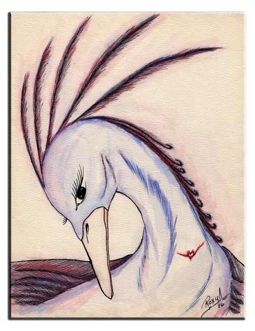 Pdreambird.jpg