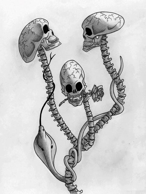 skull-tete5P.jpg
