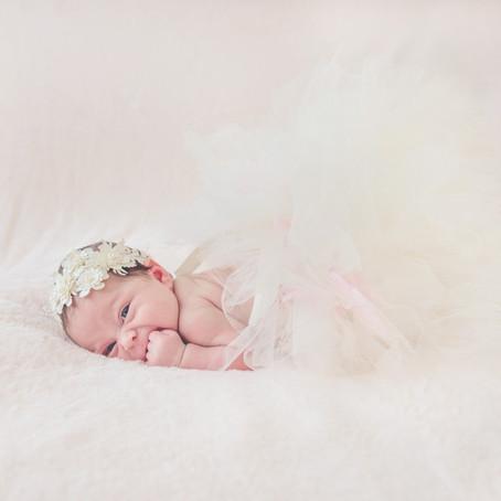Dallas Newborn Studio Session: Avila Family