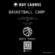 basketball camp flyer.png