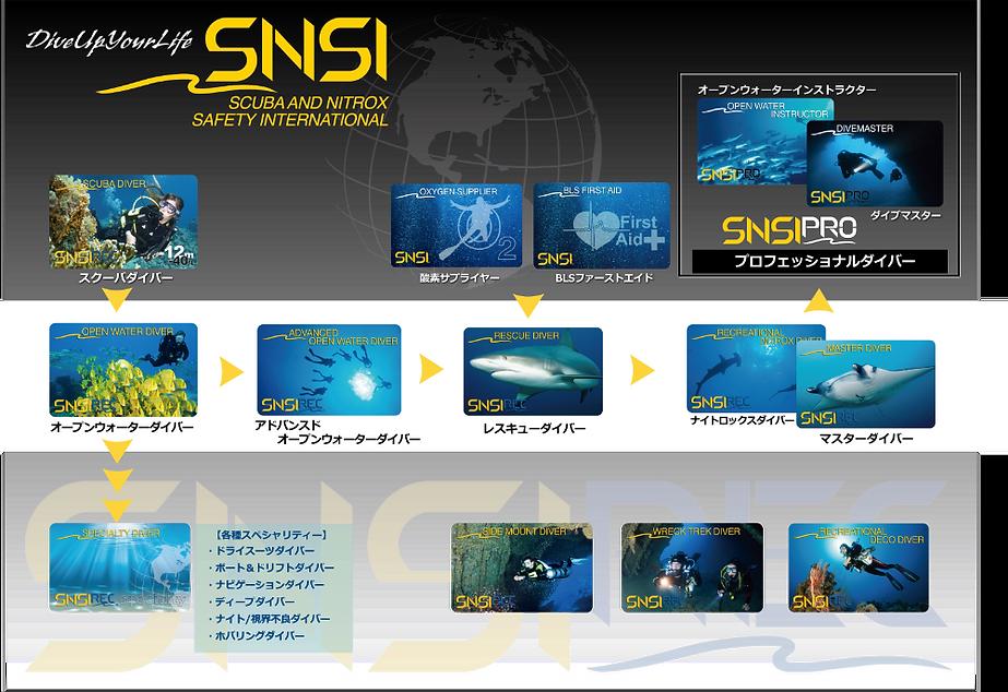 SNSIステップアッププログラム