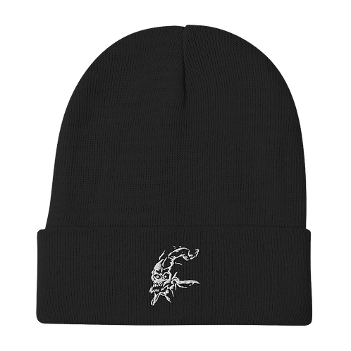 Scura Embroidered Beanie