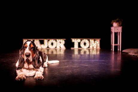 Major-Tom-IMG_0521-21-1024x683 3.jpg