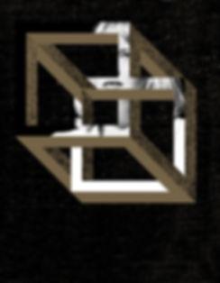DIAB- box - vertical.jpg