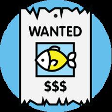 Aquarium fish wanted