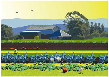 campbell farm-01-01.jpeg