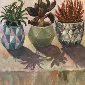 '3 Cacti'