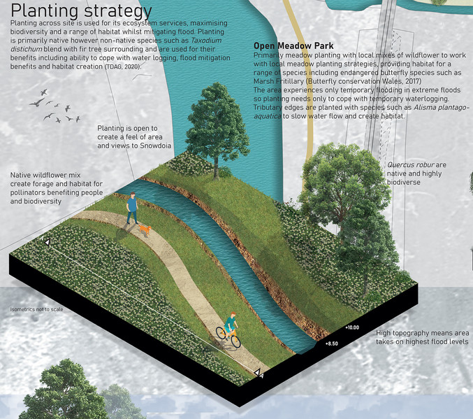 Planting strategy – Using ecosystem services