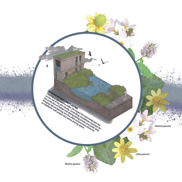 Integrated Wetland Planting