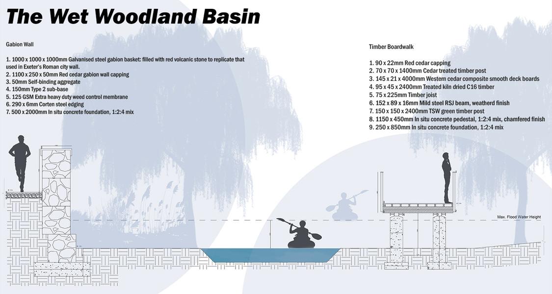 The Wet Woodland Basin