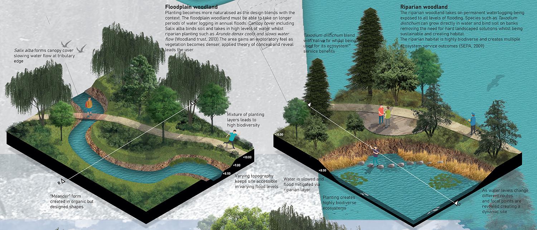 Planting strategy – Floodplain and Riparian woodland