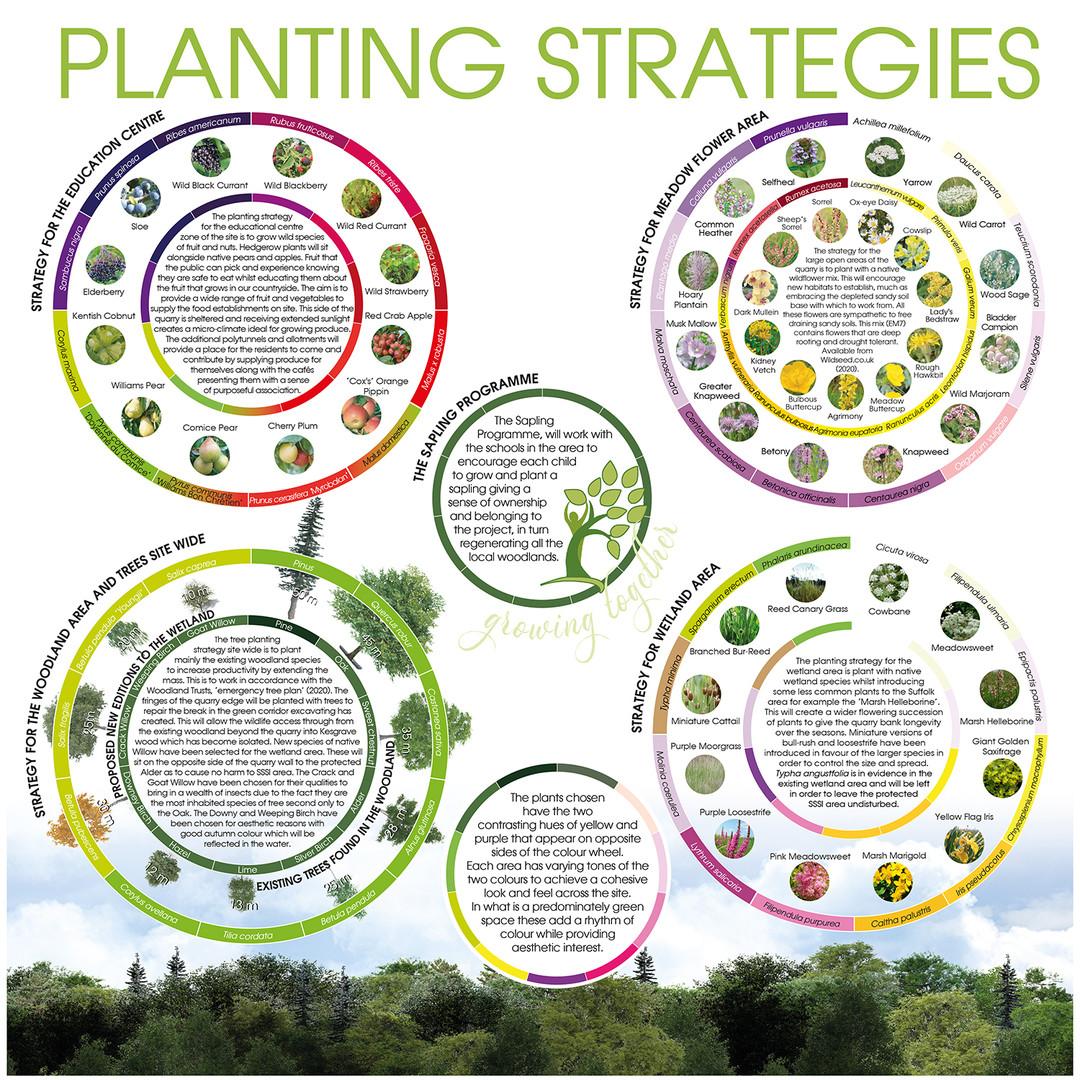 PLANTING STRATEGIES