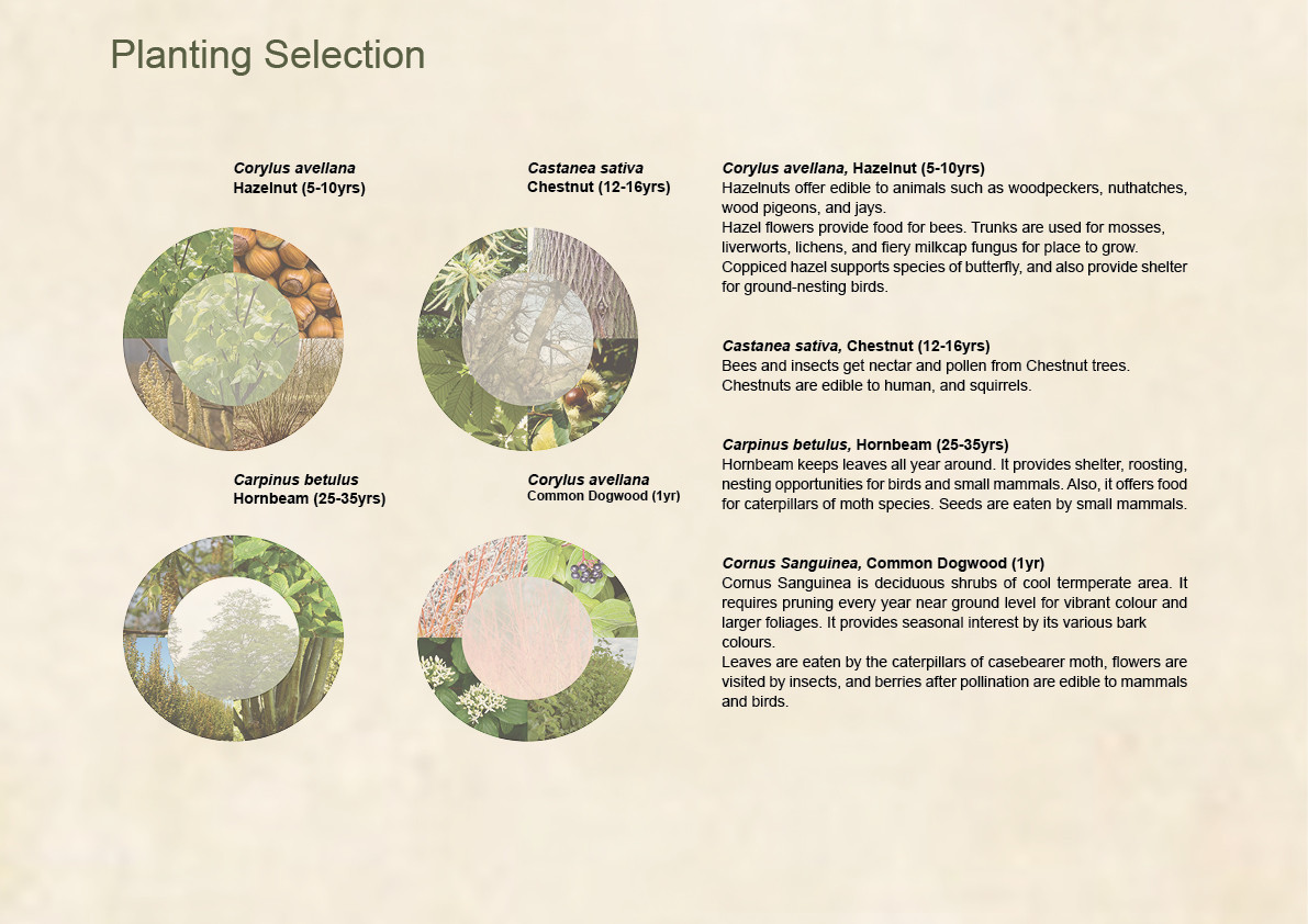 Planting Selection