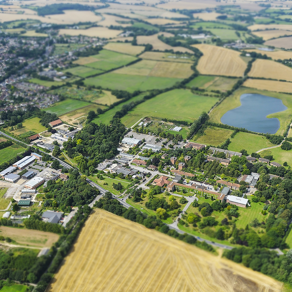Writtle's expansive Campus