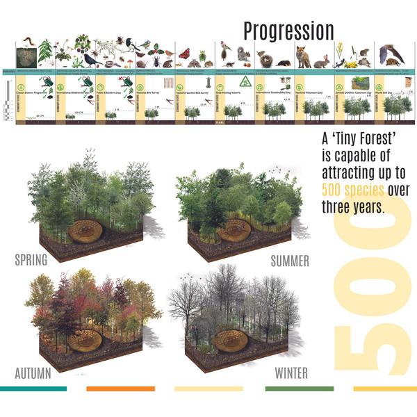Progression - Flora, Fauna and Social Engagement