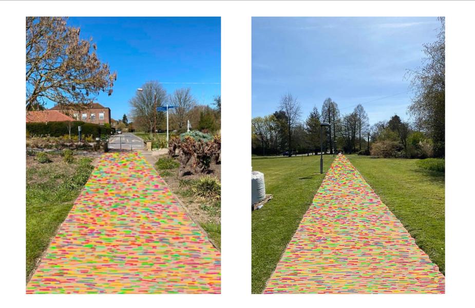 Recycled Skateboard Path (digital image)