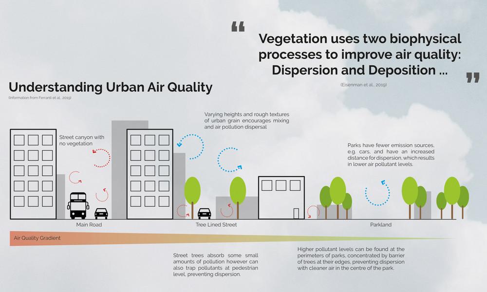 Understanding Urban Air Quality