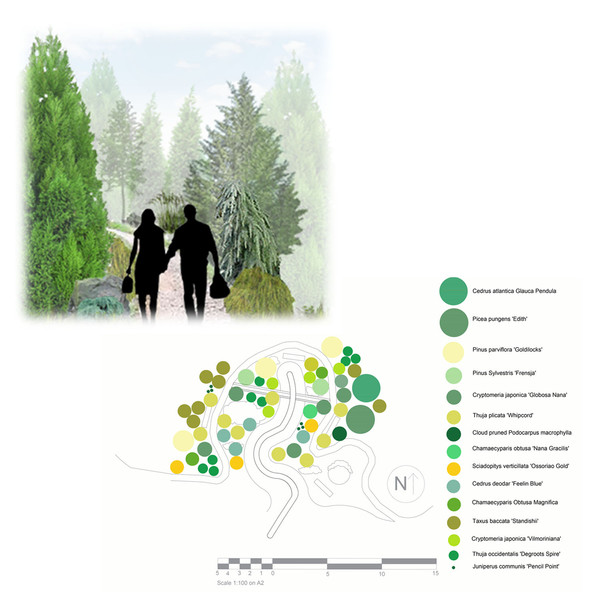 The Winter Garden and Conifer Planting Plan