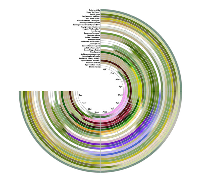 Floristic Relay Wheel