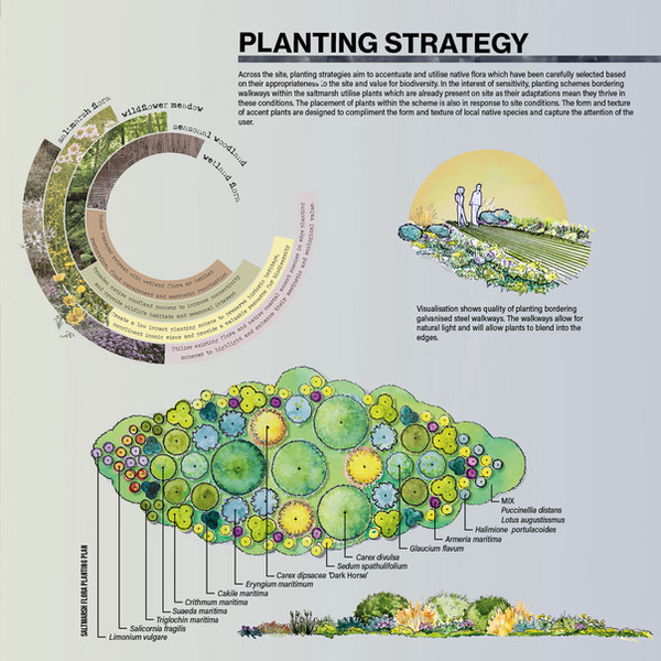 Planting Strategy