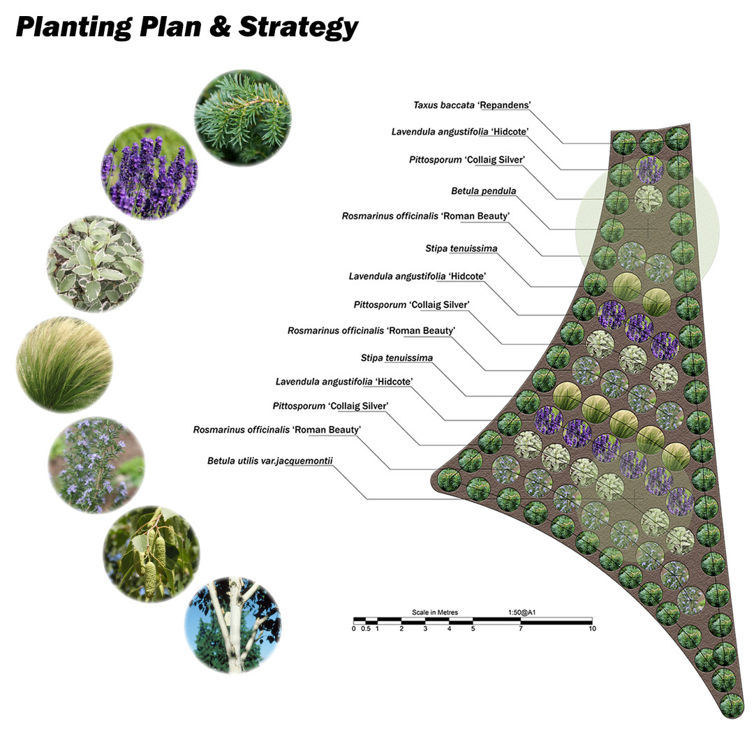Planting Plan and Strategy