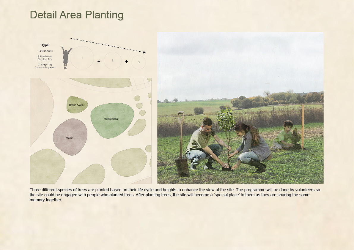 Detail Area Planting