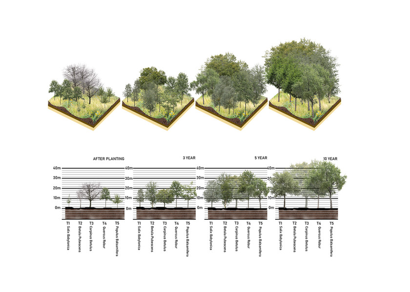 Green Tree Infrastructure Strategy