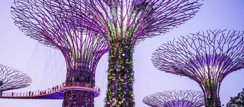 TOP DESTINATIONS IN SINGAPORE