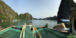 THE LOCAL Floating bungalow view