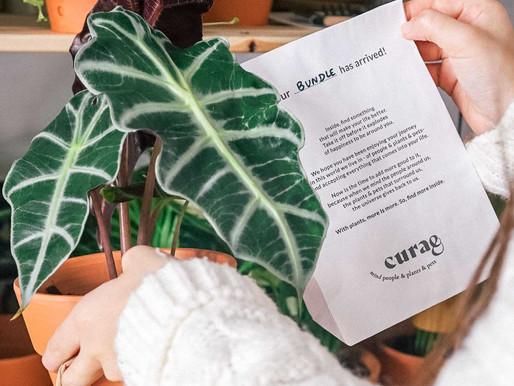 Vai nascer um espaço em Lisboa que quer juntar plantas, pessoas e patudos
